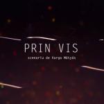 """Prin Vis"", spectacol online la Teatrul Național Timișoara"